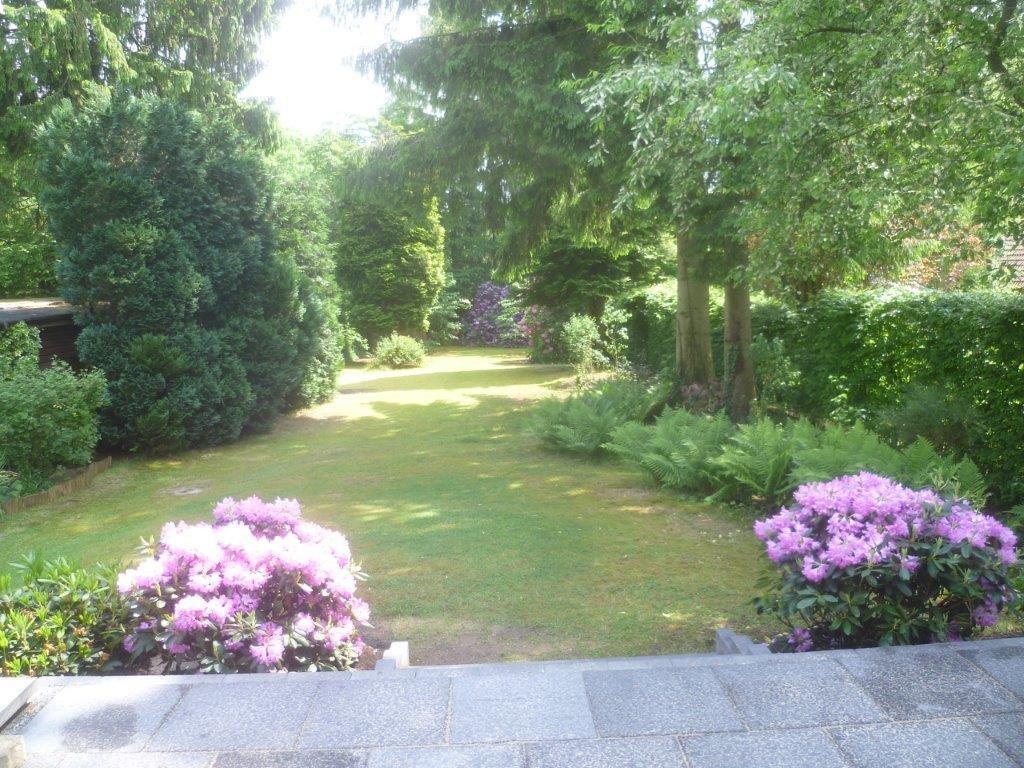 Garten-im-Sommer